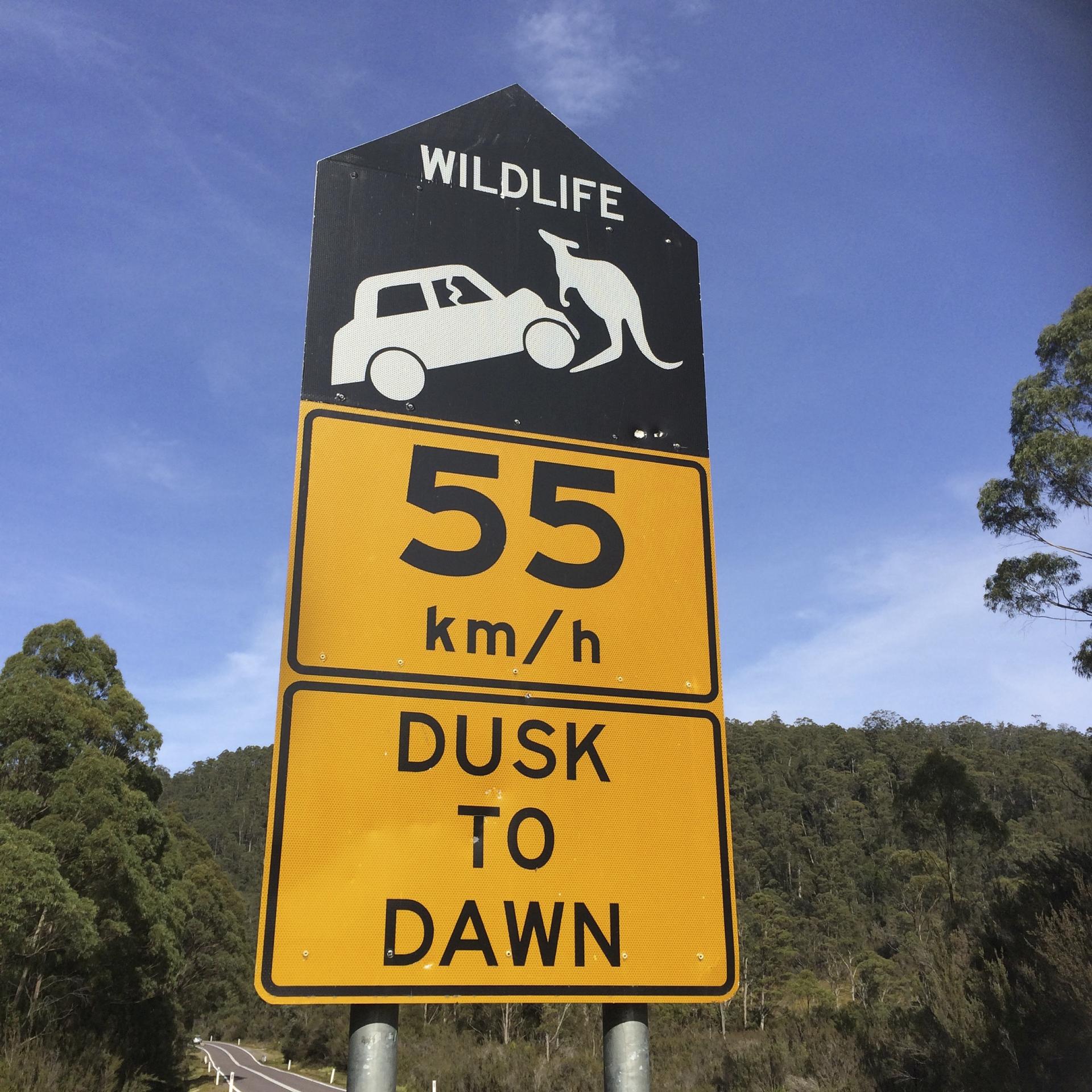 aktuelle uhrzeit tasmanien