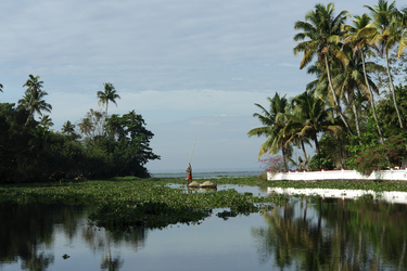 In den Backwaters von Kerala