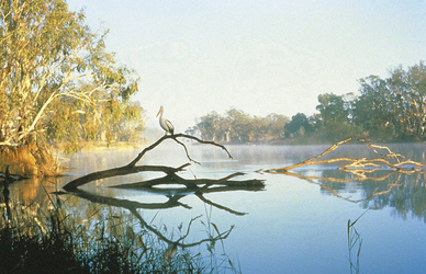 Morgenstimmung im Kakadu Nationalpark