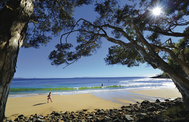 Noosa Tea Tree Bay