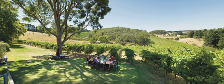 Mt. Lofty Ranges Vineyard ©SATC