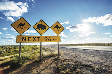 Australia Road Sign ©Greg Snell