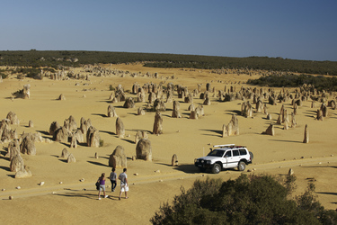 Pinnacles im Nambung National Park