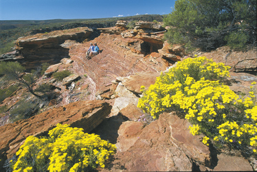 Im Kalbarri Nationalpark