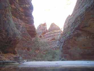 In der Cathedral Gorge