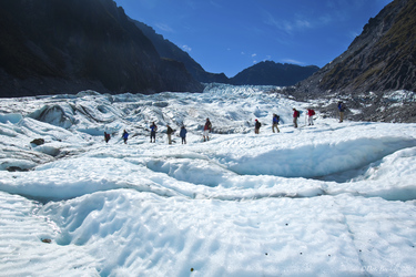 Fox Glacier Hike