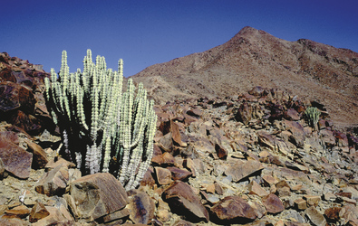 Richtersveld Nationalpark