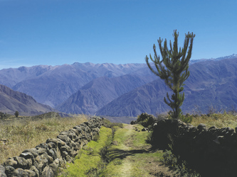 am Colca Canyon