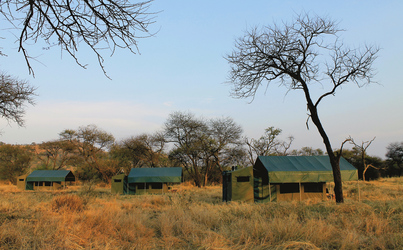 Serengeti View Camp