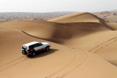 Auf Wüstensafari