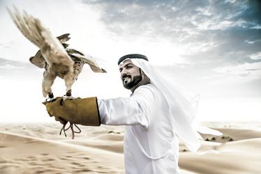 Falkner in der Wüste