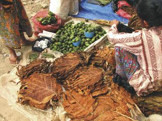 Markt in Sulawesi