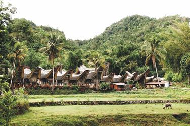 Häuser der Toraja auf Sulawesi