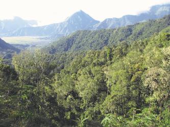 Berglandschaft auf Lombok