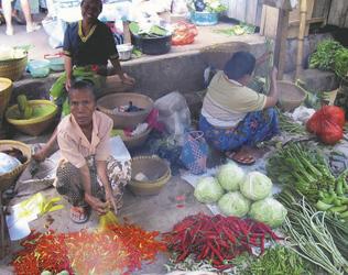 Gemüsemarkt von Lombok