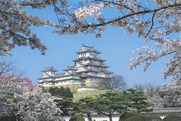 Burg von Himeji zur Kirschblütenzeit