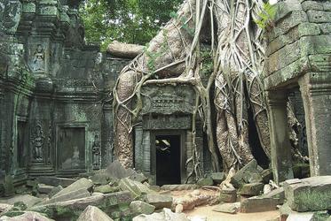 Ta Phrom Tempel, Siem Reap