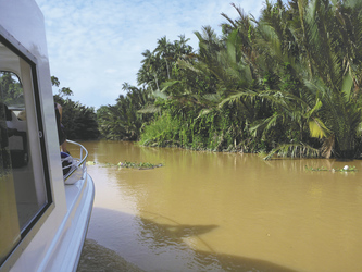 Bootsfahrt auf dem Kinabatangan River