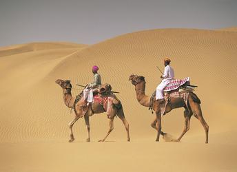 Kamelritt durch die Wüste