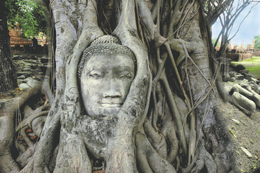 Ayutthaya, ©Asia Trails
