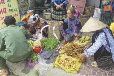 Auf dem Bac Ha Markt in Sapa