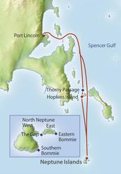 Neptunes Islands