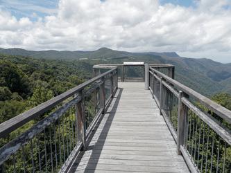 Aussichtplattform im Dorrigo Nationalpark