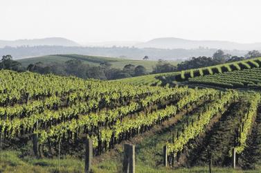 Hunter Valley ©Destination NSW