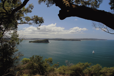Ku-ring-gai Chase Nationalpark Lion Island Blick