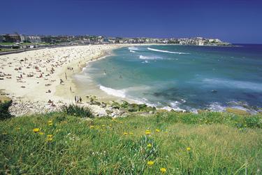 Blick auf Bondi Beach