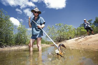 Mud Crab Speerfischen