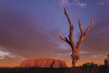 Sonnenuntergang am Uluru (Ayers Rock)