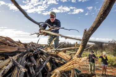 Beim Feuerholz sammeln , ©www.stevenpearcephoto.com