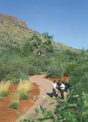 Desert Park bei Alice Springs