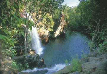 Florence Falls im Litchfield Nationalpark