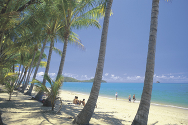 Strand von Palm Cove