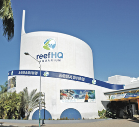 Reef HQ Aquarium