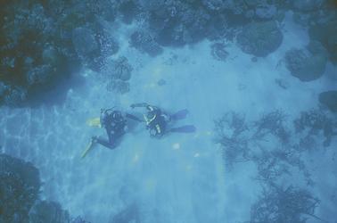 Tauchausbildung im Riff