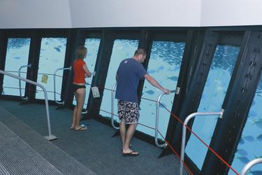 Im Unterwasser-Observatorium