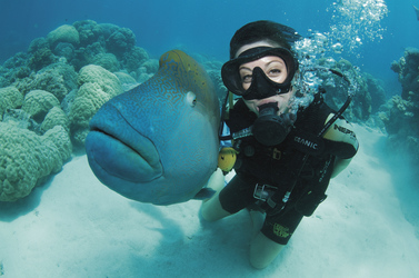 Am Great Barrier Reef