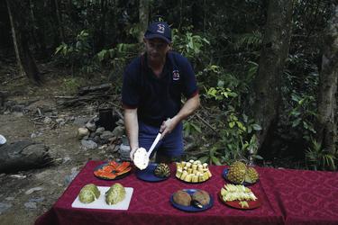 Vorbereitung zum Früchtetesten