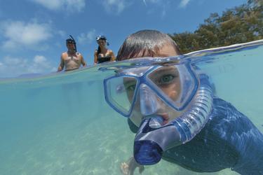 Schnorcheln vor Lady Musgrave Island, ©Tourism Queensland