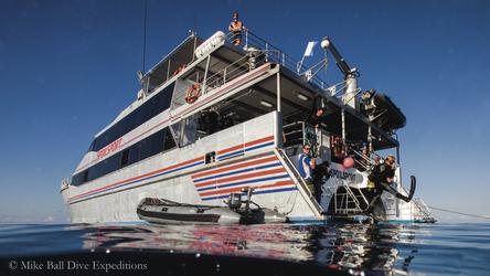 Spoilsport Tauchschiff