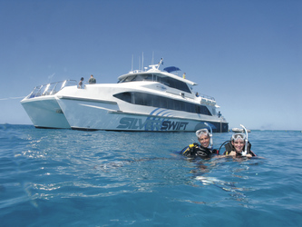 Silverswift & Taucher am Great Barrier Reef