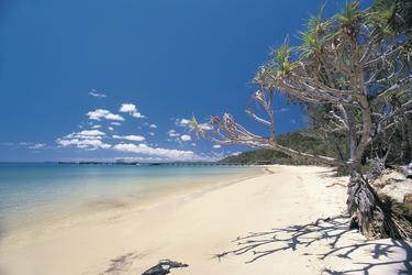 Strand und Bootssteg