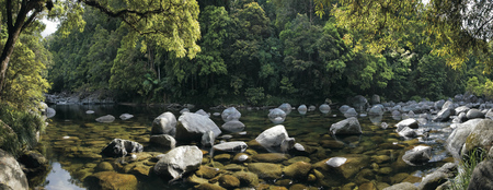 Mossman Gorge, ©Tourism and Events Queensland