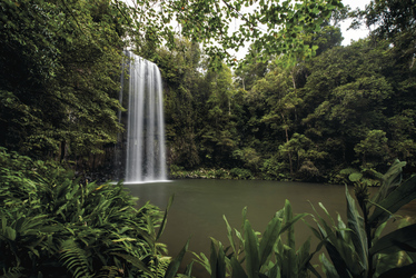 Milla Milla Falls, Atherton Tablelands, ©Tourism & Events Queensland