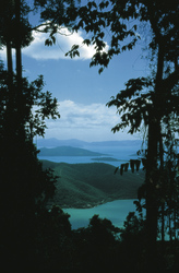 Conway Nationalpark, Blick auf die Whitsundays, ©Tourism Queensland