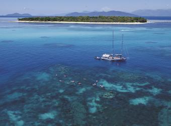 Ocean Free vor Green Island