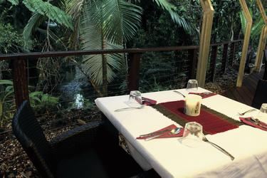 Tisch im tropischen Regenwald